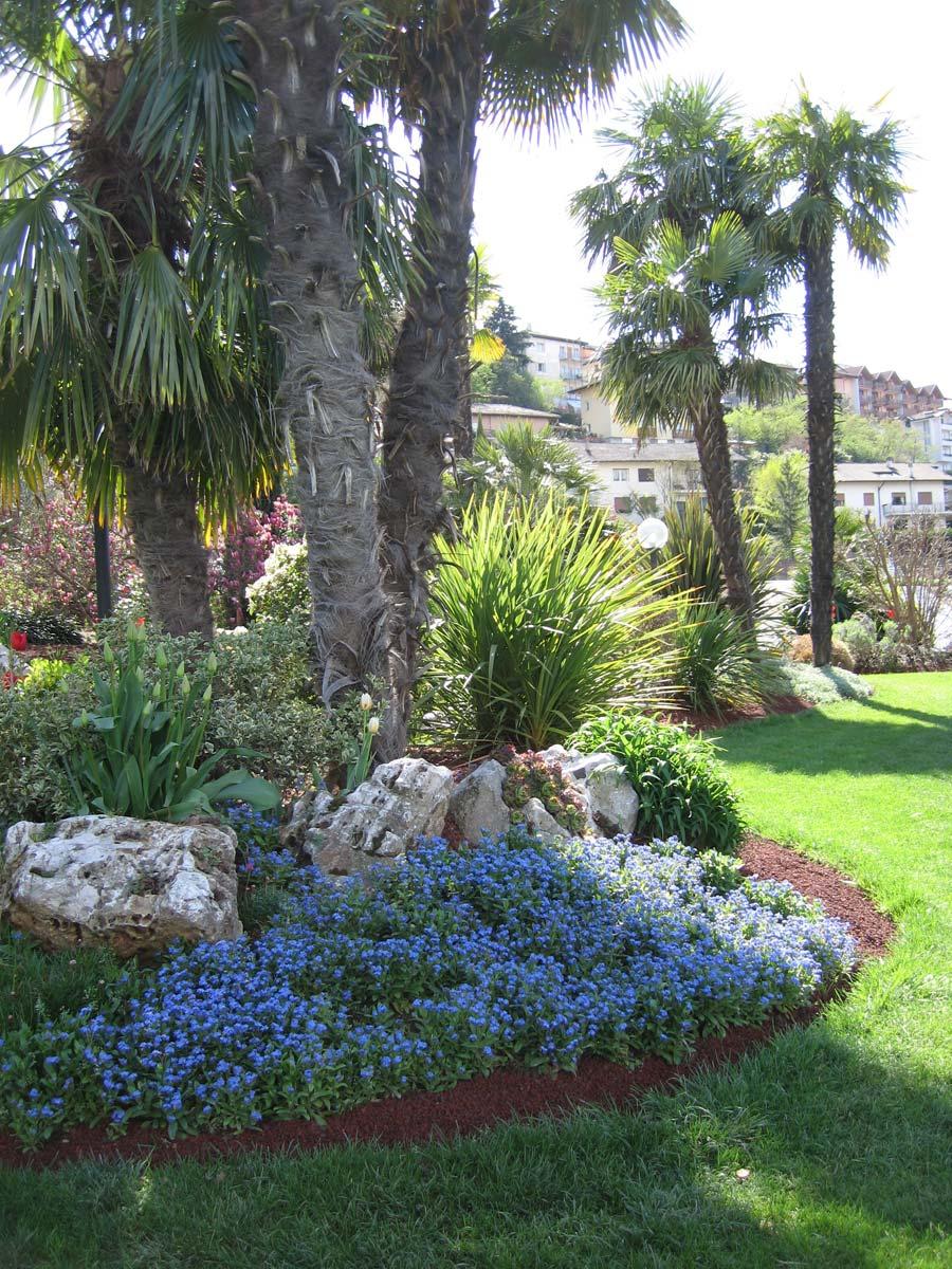 Servizi nadalini flor noleggio e allestimento piante for Creazioni giardini