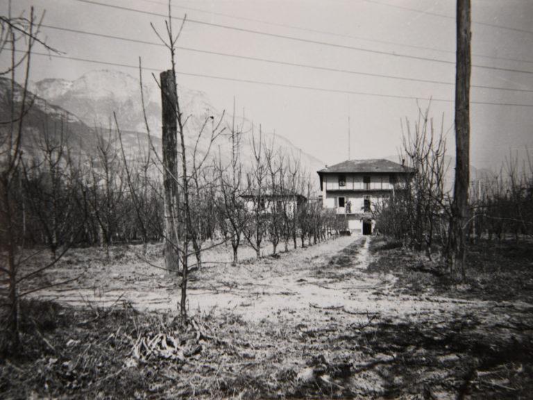 Frutteto prima della costruzione della serra